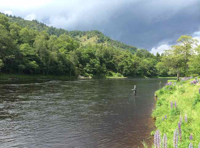 Take A Holiday On The Finest Salmon Rivers In Scotland
